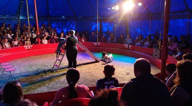 cirque camping 4 etoiles manche